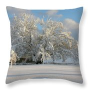 October Surprise 1872 Throw Pillow