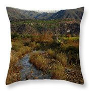Ojai Valley Throw Pillow