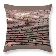 Old Red Brick Road Throw Pillow