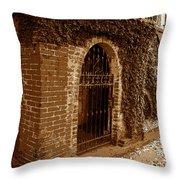 Old Savannah Throw Pillow