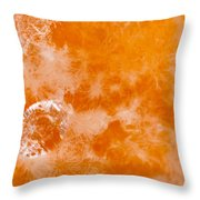 Orange 2 Throw Pillow