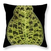 Orchid Leaf Throw Pillow
