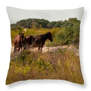 Outer Banks Horses Throw Pillow