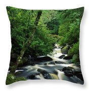 Owengarriff River, Killarney National Throw Pillow