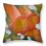 Pacify Throw Pillow