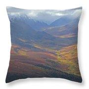 Panoramic View Of The North Klondike Throw Pillow