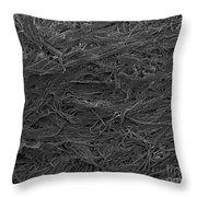 Paper Wasps Nest, Sem Throw Pillow