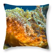 Papuan Scorpionfish Lying On A Reef Throw Pillow