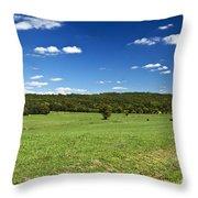 Pastoral Throw Pillow