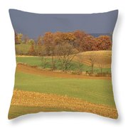 Pastoral View Of Rolling Fields Throw Pillow