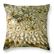 Peacock Sole On The Sea Bed Throw Pillow