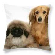 Pekingese And Dachshund Puppies Throw Pillow by Jane Burton