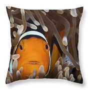 Percula Clownfish In Its Host Anemone Throw Pillow