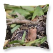 Photo 2 Throw Pillow