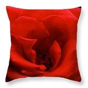 Photograph Of A Red Rose Throw Pillow