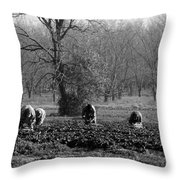 Pickers Throw Pillow