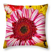 Pink And Yellow Mums Throw Pillow
