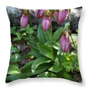 Pink Ladys Slipper Throw Pillow