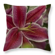 Pink-lily Throw Pillow