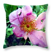 Pinklet Throw Pillow