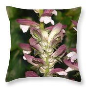Plant And Flower Throw Pillow