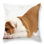 Playful Bulldog Pup Throw Pillow