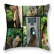 Please Don't Feed The Squirrels Throw Pillow