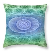 Plurality Of Worlds, Leonhard Euler Throw Pillow
