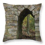 Poinsett Bridge With Gothic Arch Of Stone Throw Pillow