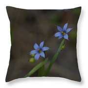 Pointed Blue-eyed Grass Throw Pillow