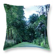 Poitevin Marsh Throw Pillow