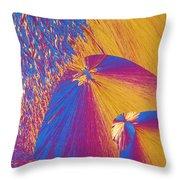 Polypropylene Throw Pillow