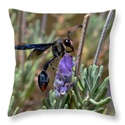 Potter Wasp Throw Pillow