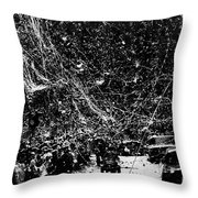 Presidential Campaign, 1960 Throw Pillow