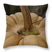 Pumpkin Top Throw Pillow