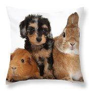 Pup, Guinea Pig And Rabbit Throw Pillow