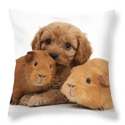 Puppy And Guinea Pigs Throw Pillow