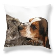 Puppy And Rabbt Throw Pillow