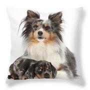 Puppy Pals Throw Pillow