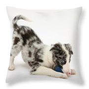 Puppy Playing With A Ball Throw Pillow