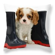 Puppy With Rain Boots Throw Pillow