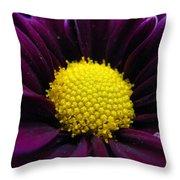 Purple Jewel Throw Pillow