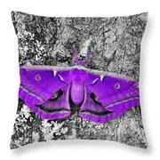 Purple Polyphemus Throw Pillow