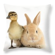 Rabbit And Duckling Throw Pillow
