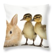 Rabbit And Ducklings Throw Pillow