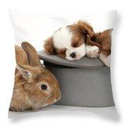Rabbit And Spaniel Pups Throw Pillow