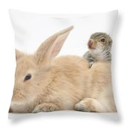 Rabbit And Squirrel Throw Pillow