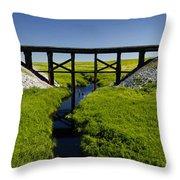 Railroad Trestle Throw Pillow