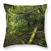 Rain Forest On Vancouver Island Throw Pillow