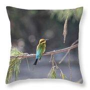 Rainbow Bee-eater V4 Throw Pillow